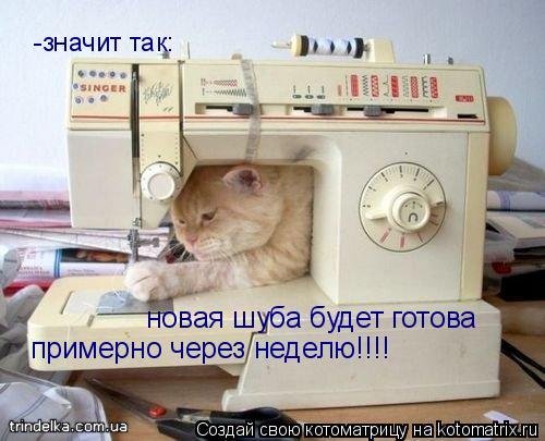 Котоматрица: -значит так: новая шуба будет готова примерно через неделю!!!!