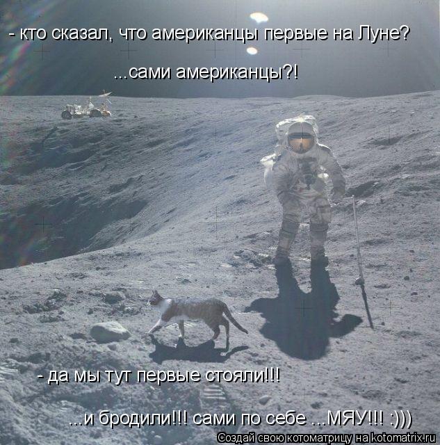 Котоматрица: - кто сказал, что американцы первые на Луне? ...сами американцы?! - да мы тут первые стояли!!! ...и бродили!!! сами по себе ...МЯУ!!! :)))