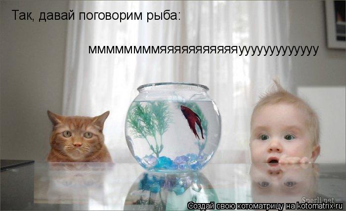 Котоматрица: Так, давай поговорим рыба: ммммммммяяяяяяяяяяяууууууууууууу