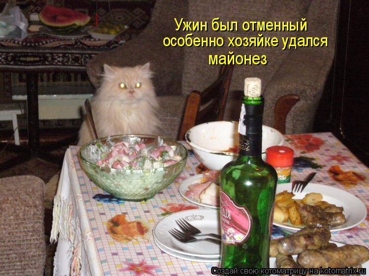 Котоматрица: Ужин был отменный особенно хозяйке удался  майонез