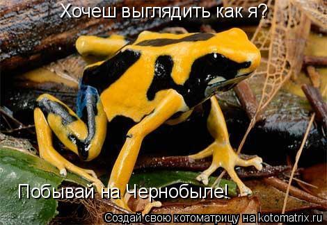 Котоматрица: Хочеш выглядить как я? Побывай на Чернобыле!