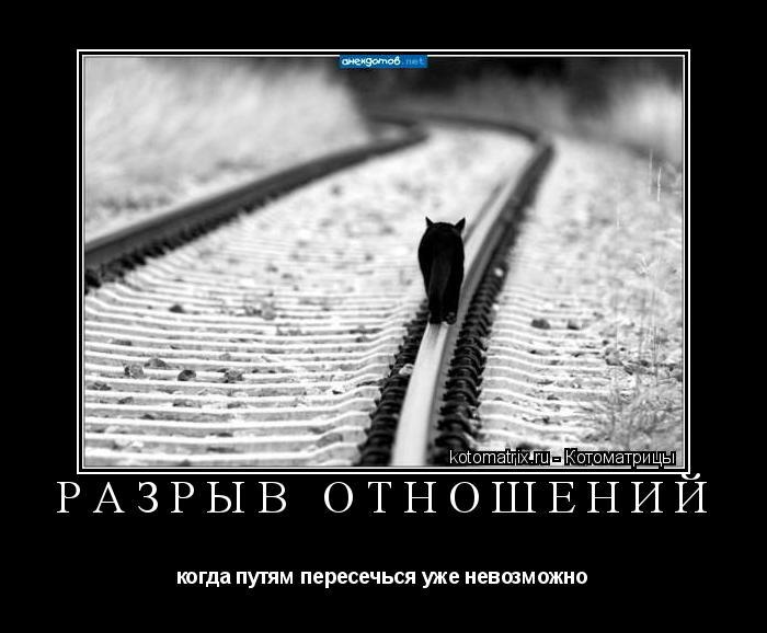 Котоматрица: РАЗРЫВ ОТНОШЕНИЙ когда путям пересечься уже невозможно