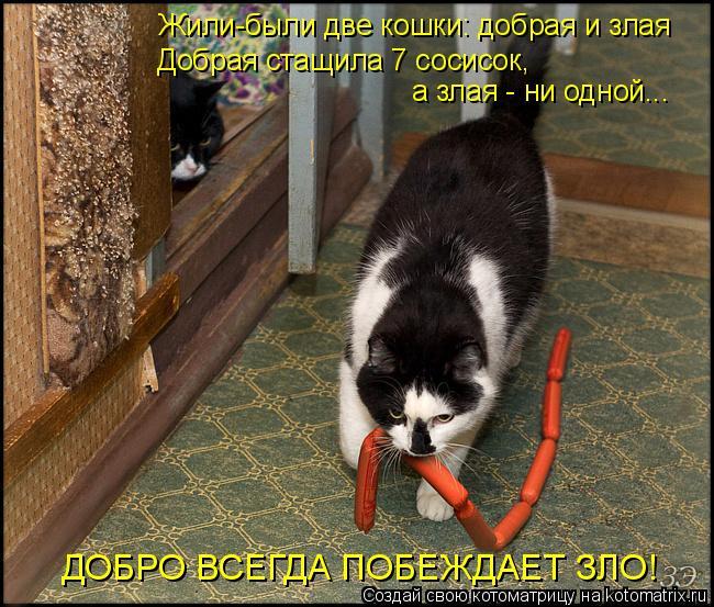 Котоматрица: Жили-были две кошки: добрая и злая Добрая стащила 7 сосисок, а злая - ни одной... ДОБРО ВСЕГДА ПОБЕЖДАЕТ ЗЛО!
