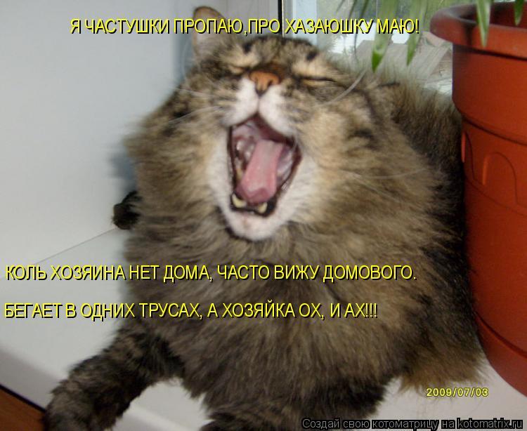 Котоматрица: Я ЧАСТУШКИ ПРОПАЮ,ПРО ХАЗАЮШКУ МАЮ! КОЛЬ ХОЗЯИНА НЕТ ДОМА, ЧАСТО ВИЖУ ДОМОВОГО. БЕГАЕТ В ОДНИХ ТРУСАХ, А ХОЗЯЙКА ОХ, И АХ!!!