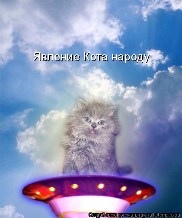 Котоматрица: ; Явление Кота народу