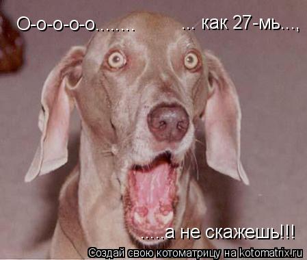 Котоматрица: О-о-о-о-о........  ... как 27-мь...,  .....а не скажешь!!!