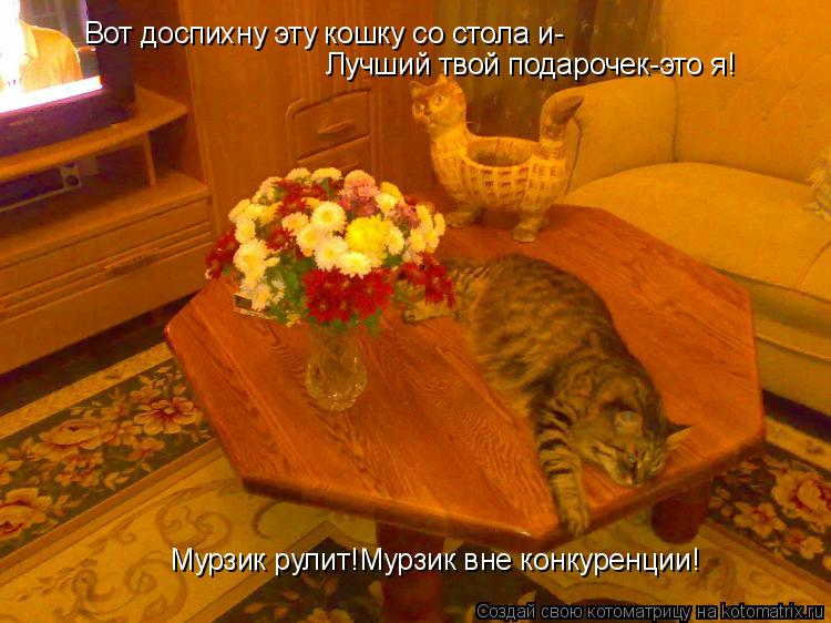 Котоматрица: Вот доспихну эту кошку со стола и- Лучший твой подарочек-это я! Мурзик рулит!Мурзик вне конкуренции!
