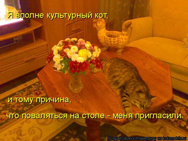 Котоматрица: Я вполне культурный кот, и тому причина,  что поваляться на столе - меня пригласили.
