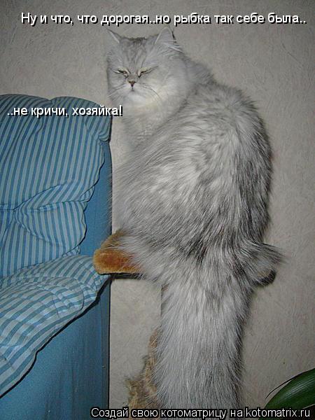 Котоматрица: Ну и что, что дорогая..но рыбка так себе была..  ..не кричи, хозяйка!