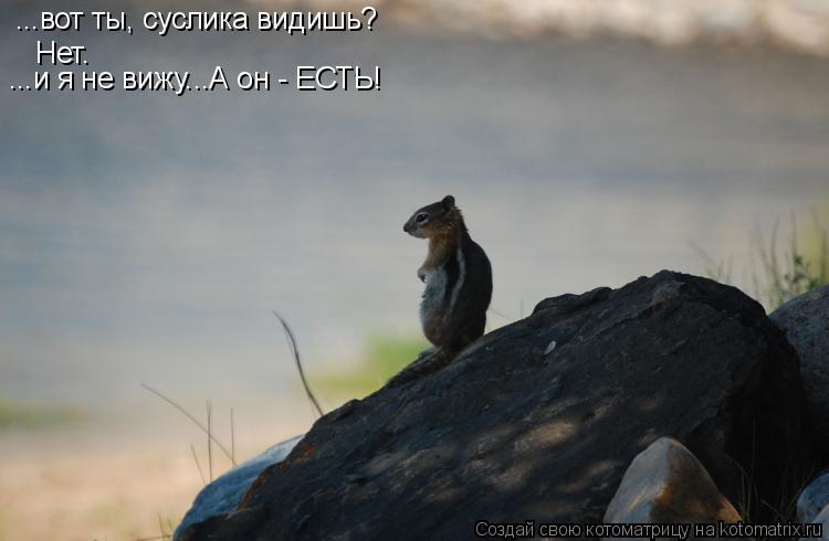 http://kotomatrix.ru/images/lolz/2009/07/09/318323.jpg