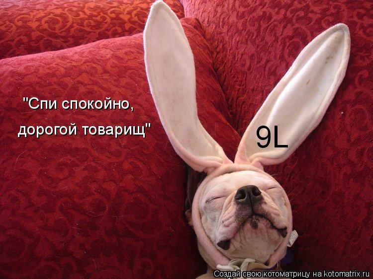 """Котоматрица: 9L """"Спи спокойно, дорогой товарищ"""""""