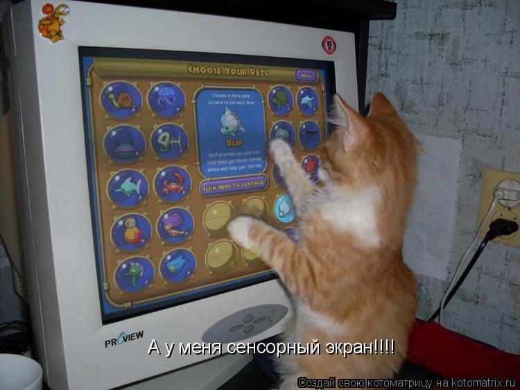 Котоматрица: А у меня сенсорный экран!!!!