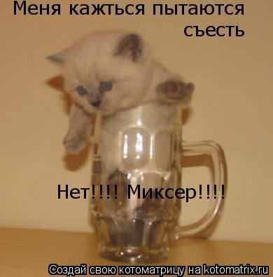 Котоматрица: Меня кажться пытаются съесть Нет!!!! Миксер!!!!