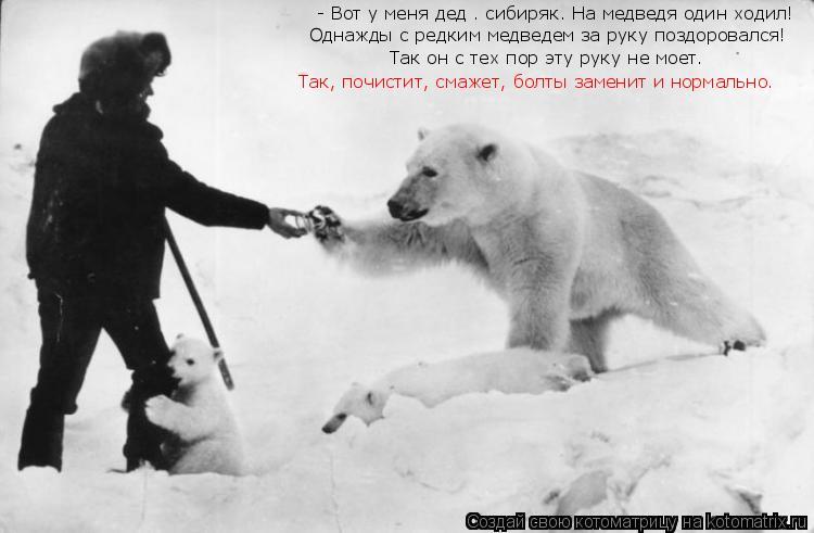 Котоматрица: - Вот у меня дед – сибиряк. На медведя один ходил!  Однажды с редким медведем за руку поздоровался! Так он с тех пор эту руку не моет.  Так, почи