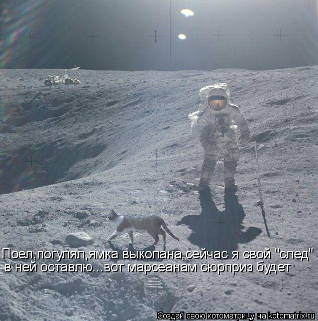 """Котоматрица: Поел,погулял,ямка выкопана,сейчас я свой """"след"""" в ней оставлю...вот марсеанам сюрприз будет"""