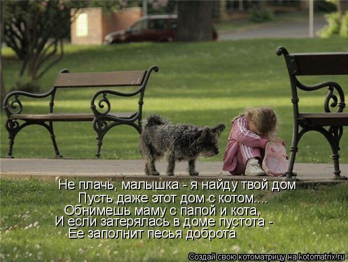 Котоматрица: Не плачь, малышка - я найду твой дом Пусть даже этот дом с котом.... Обнимешь маму с папой и кота, И если затерялась в доме пустота -  Ее заполнит