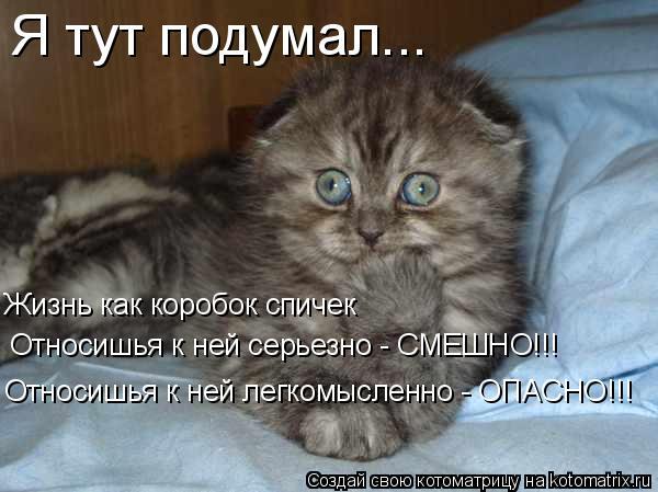 Котоматрица: Я тут подумал... Жизнь как коробок спичек Относишья к ней легкомысленно - ОПАСНО!!! Относишья к ней серьезно - СМЕШНО!!!