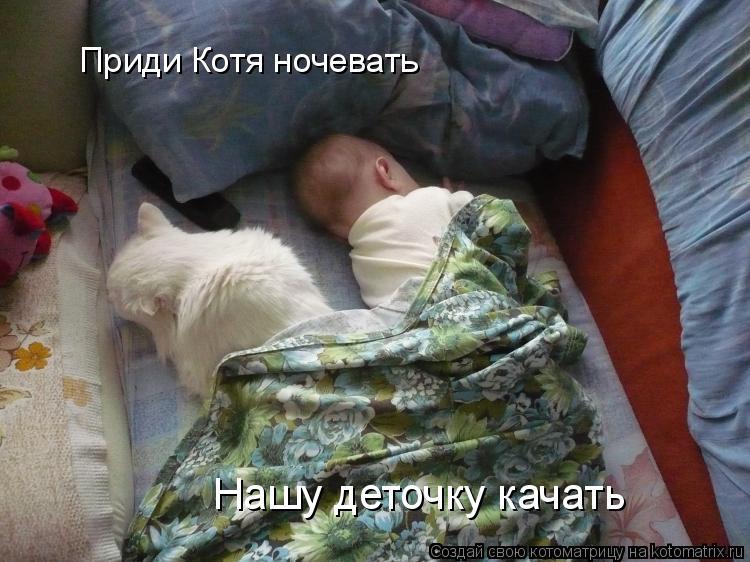 Котоматрица: Приди Котя ночевать         Нашу деточку качать