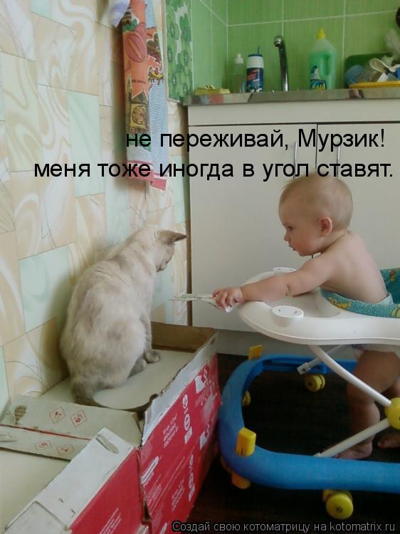 Котоматрица: не переживай, Мурзик! меня тоже иногда в угол ставят.