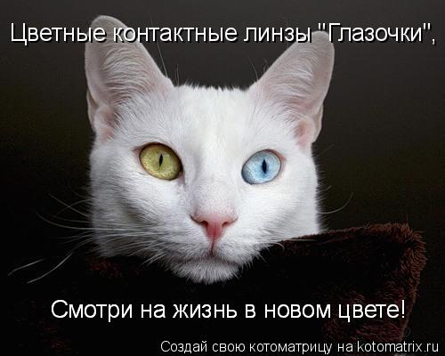 """Котоматрица: Смотри на жизнь в новом цвете! Смотри на жизнь в новом цвете!  Цветные контактные линзы """"Глазочки"""","""