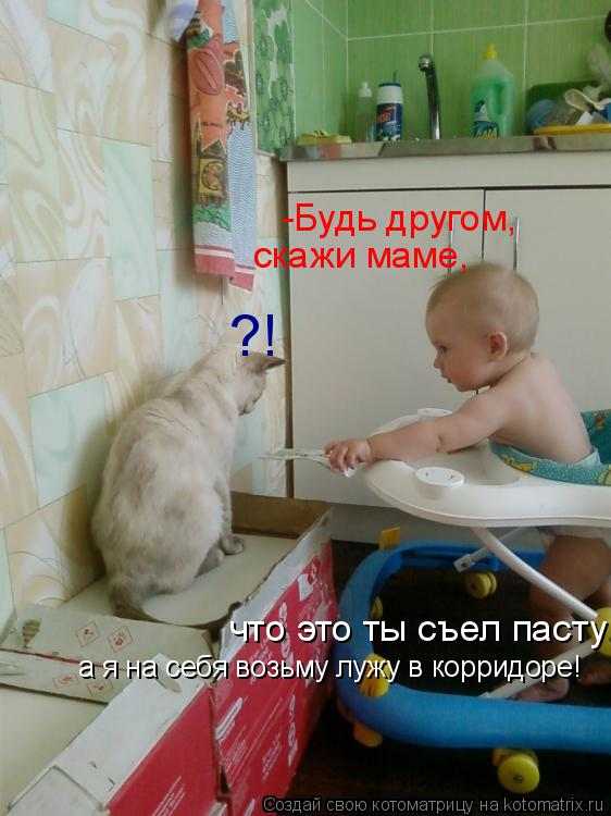Котоматрица: -Будь другом, скажи маме, что это ты съел пасту! ?! а я на себя возьму лужу в корридоре!