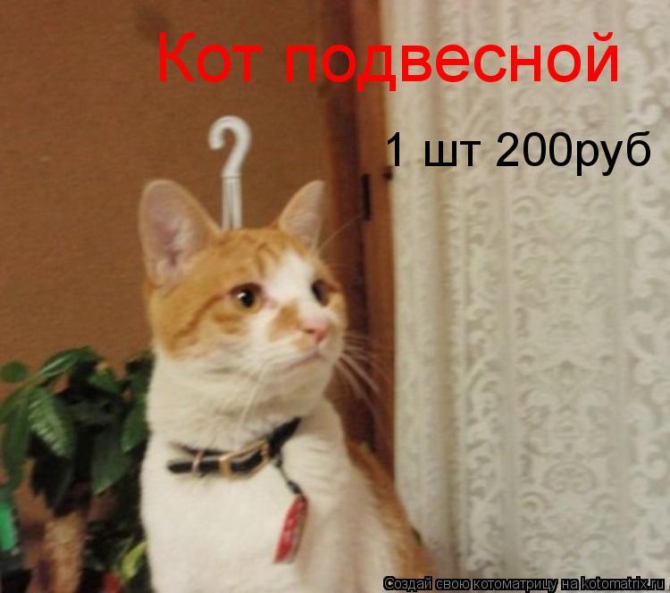 Котоматрица: Кот подвесной 1 шт 200руб