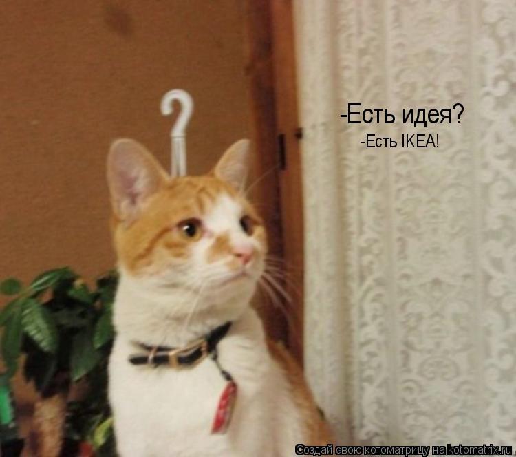 Котоматрица: -Есть идея? -Есть IKEA!