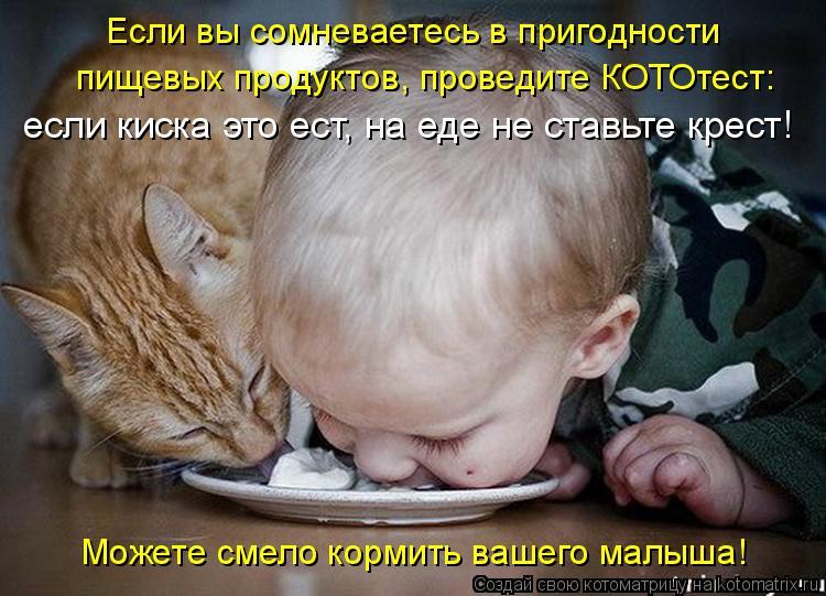 Котоматрица: Если вы сомневаетесь в пригодности  пищевых продуктов, проведите КОТОтест:  если киска это ест, на еде не ставьте крест!  Можете смело кормит