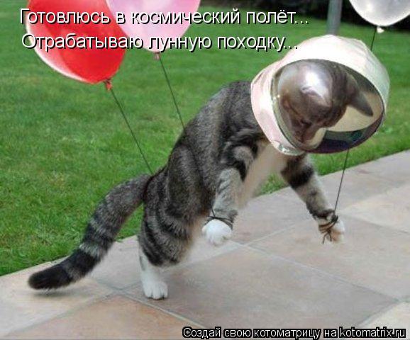 Котоматрица: Готовлюсь в космический полёт... Отрабатываю лунную походку...
