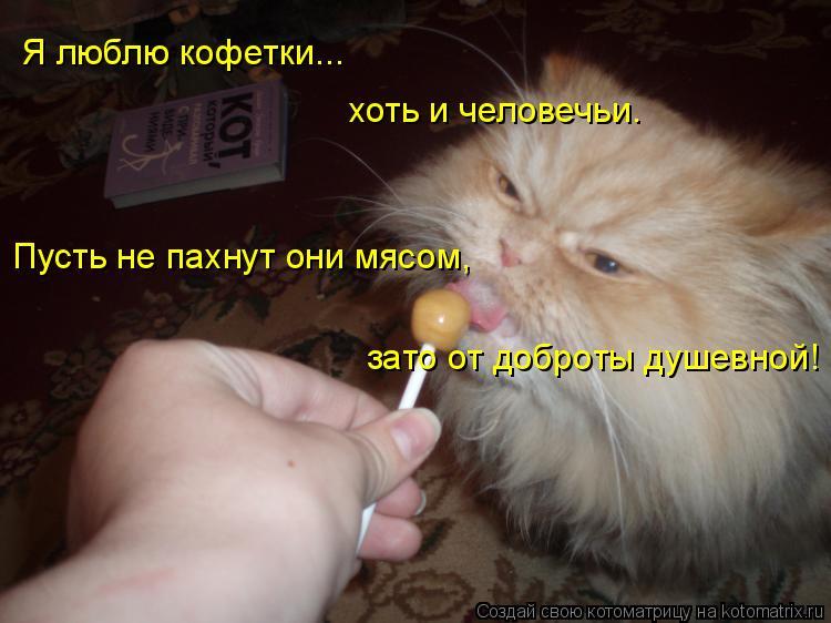 Котоматрица: Я люблю кофетки... хоть и человечьи. Пусть не пахнут они мясом, зато от доброты душевной!