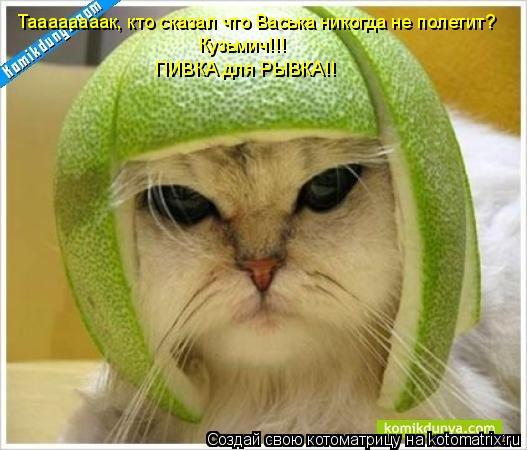 Котоматрица: Таааааааак, кто сказал что Васька никогда не полетит? Кузьмич!!!  ПИВКА для РЫВКА!!