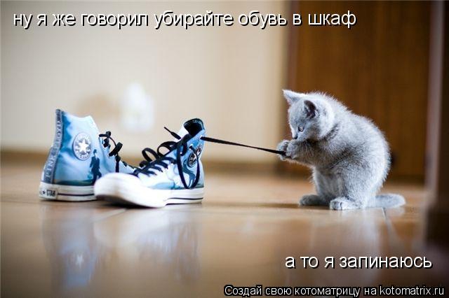 Котоматрица: ну я же говорил убирайте обувь в шкаф а то я запинаюсь