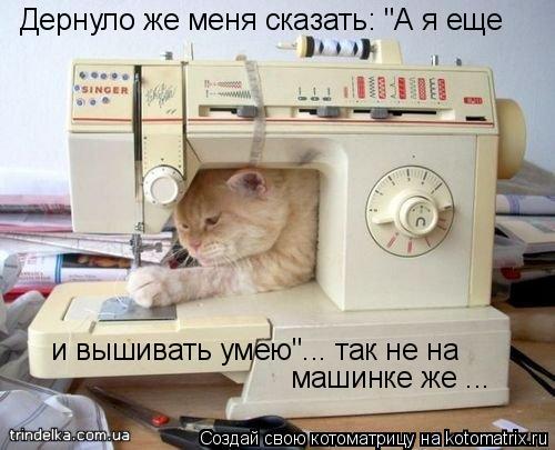 """Котоматрица: Дернуло же меня сказать: """"А я еще и вышивать умею""""... так не на машинке же ..."""