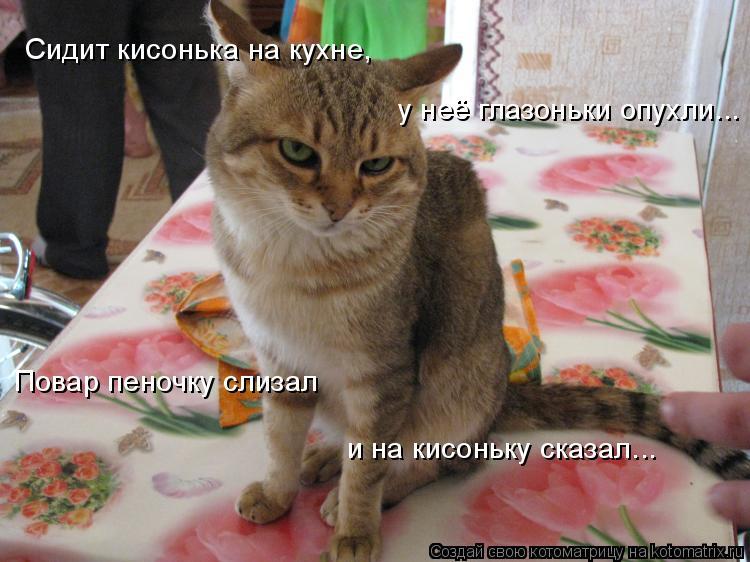 Котоматрица: Сидит кисонька на кухне,  у неё глазоньки опухли... Повар пеночку слизал и на кисоньку сказал...