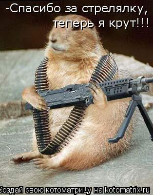 Котоматрица: -Спасибо за стрелялку, теперь я крут!!!