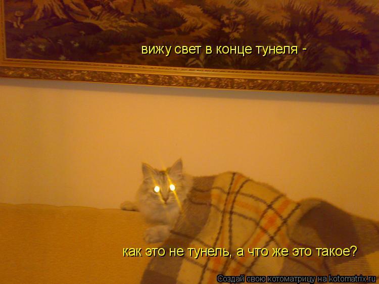 Котоматрица: вижу свет в конце тунеля как это не тунель, а что же это такое? -