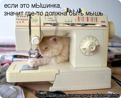 Котоматрица: если это мЫшинка,  значит где-то должна быть мышь