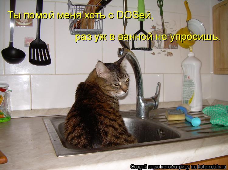 Котоматрица: Ты помой меня хоть с DOSей, раз уж в ванной не упросишь.