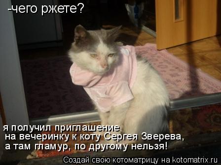 Котоматрица: -чего ржете?  на вечеринку к коту Сергея Зверева, я получил приглашение а там гламур, по другому нельзя!