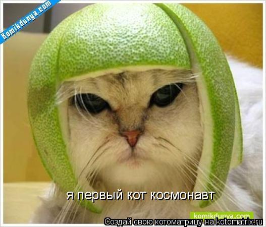 Котоматрица: я первый кот космонавт