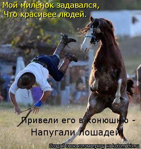 Котоматрица: Мой милёнок задавался, Что красивее людей. Напугали лошадей! Привели его в конюшню -