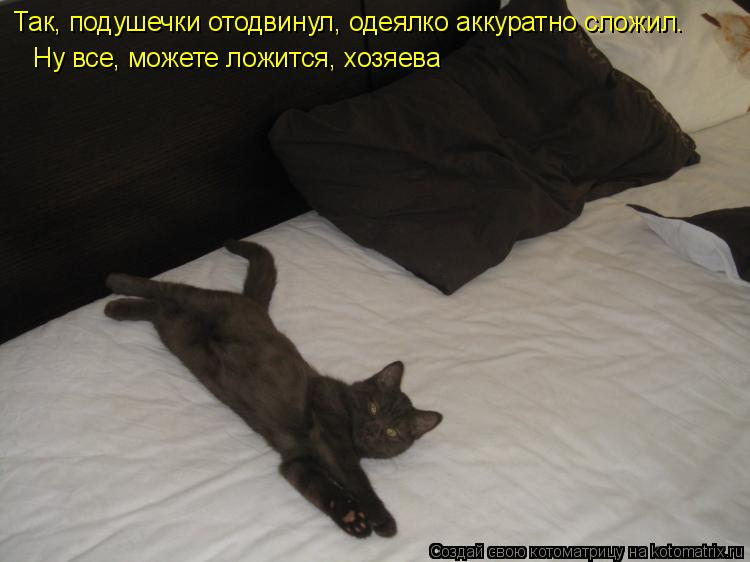 Котоматрица: Так, подушечки отодвинул, одеялко аккуратно сложил. Ну все, можете ложится, хозяева