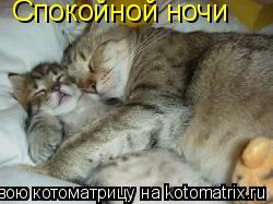 Котоматрица: Спокойной ночи