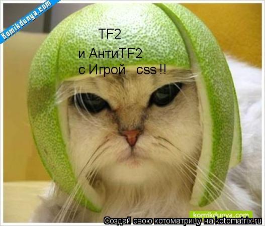 Котоматрица: ТF2 и АнтиТF2 с Игрой   сss ! !