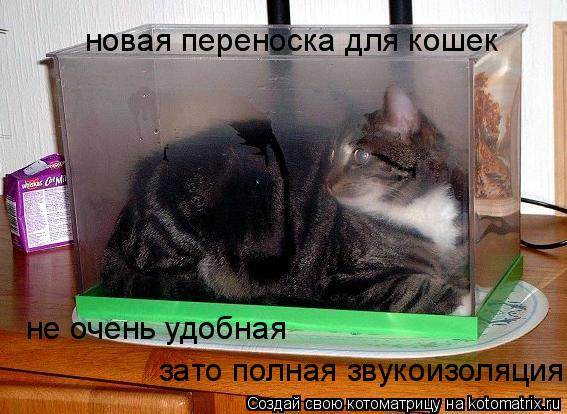 Котоматрица: новая переноска для кошек не очень удобная зато полная звукоизоляция