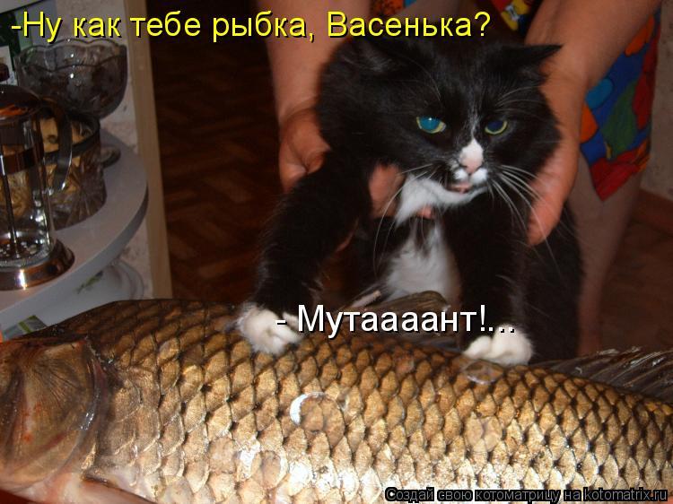 Котоматрица: - Мутаааант!... -Ну как тебе рыбка, Васенька?
