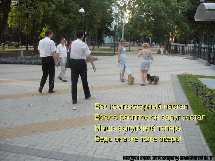 Котоматрица: Век компьютерный настал Всех в расплох он вдруг застал Мышь выгуливай теперь Ведь она же тоже зверь!
