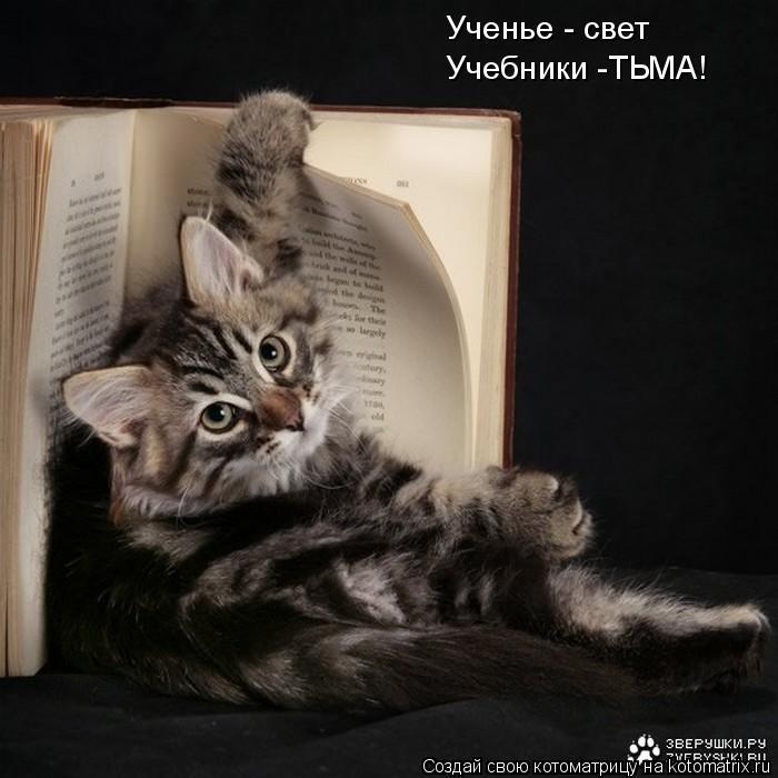 Котоматрица: Ученье - свет Учебники -ТЬМА!