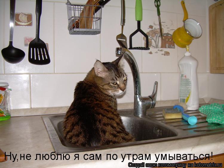 Котоматрица: Ну,не люблю я сам по утрам умываться!