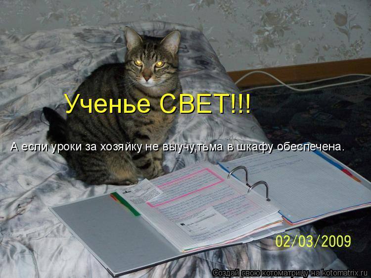 Котоматрица: Ученье СВЕТ!!! А если уроки за хозяйку не выучу,тьма в шкафу обеспечена.